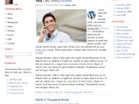 WordPress: Como deixar seu blog com a aparência do Google+