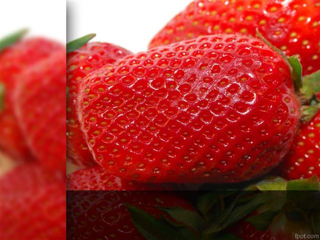 template powerpoint gratuito frutas