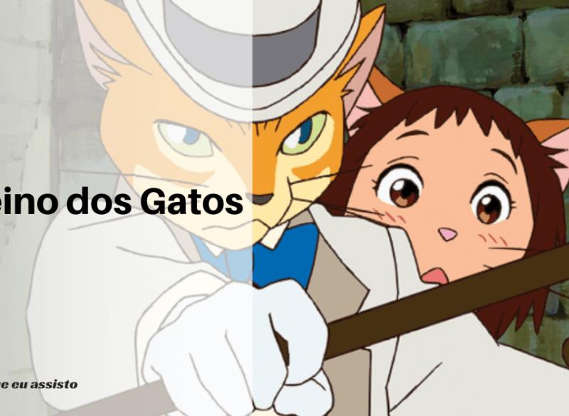 O Reino dos Gatos, um lugar desconhecido por quase todos 11