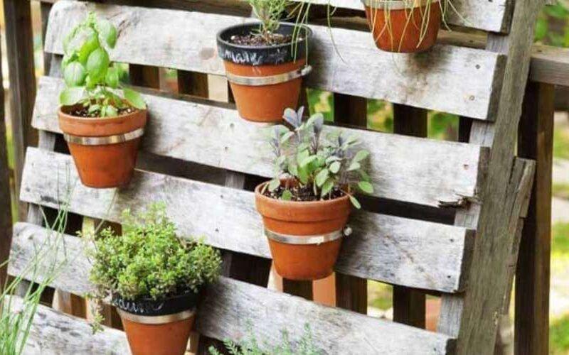 7 inspirações para se criar um jardim simples e maravilhoso 15